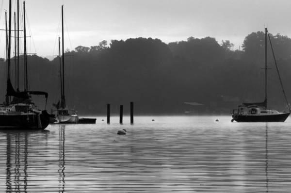 Photograph - Sailboats by Sharon Popek