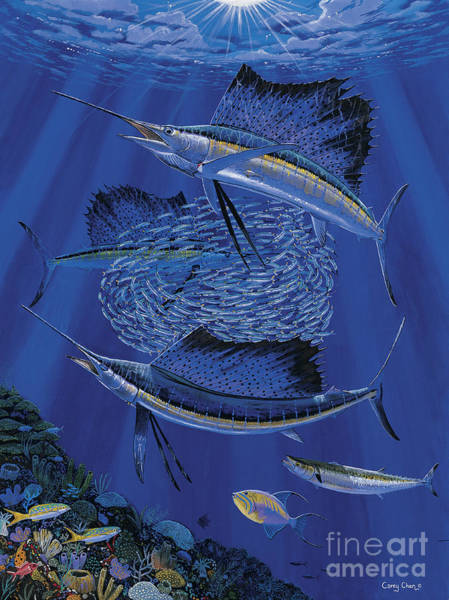 Scuba Diving Painting - Sailfish Round Up Off0060 by Carey Chen