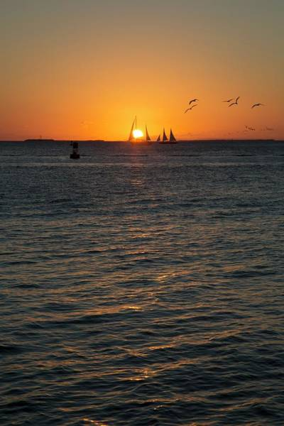 Us West Coast Photograph - Sailing Boats At Sunset by Jim West