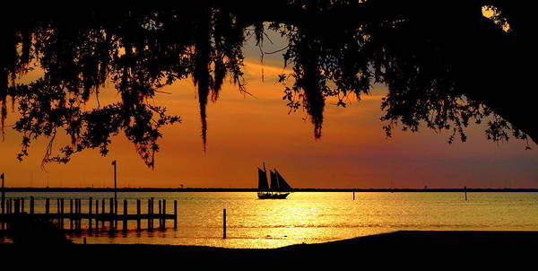 Photograph - Sailing Destin by James Granberry