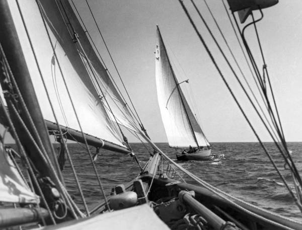 Thoroughbred Racing Wall Art - Photograph - Sailing In Los Angeles Regatta by Underwood Archives