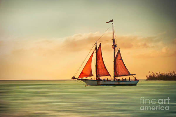 Mod Photograph - Sailing Into The Sun by Hannes Cmarits