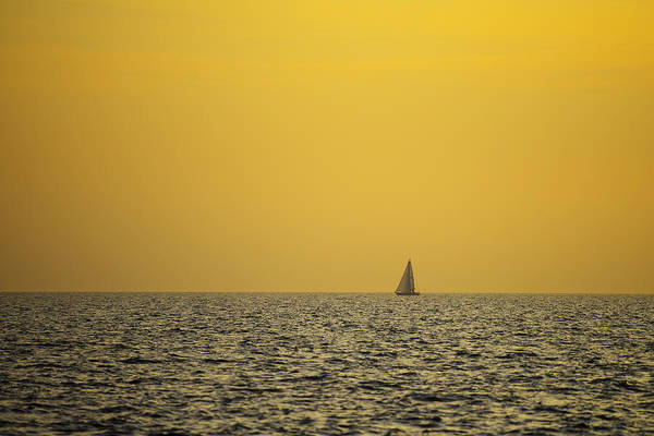 Photograph - Sailing by Ivan Slosar