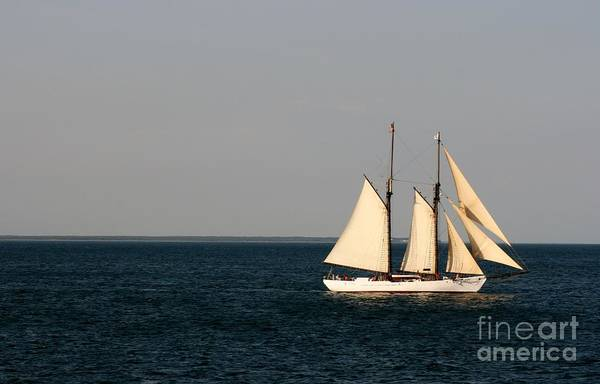 Aft Photograph - Sailing Nantucket Sound by Barbara Bardzik