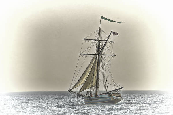 Photograph - Sailing Off by Jack R Perry