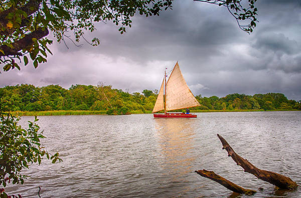 Wall Art - Photograph - Sailing On The Broads by Dale Reynolds