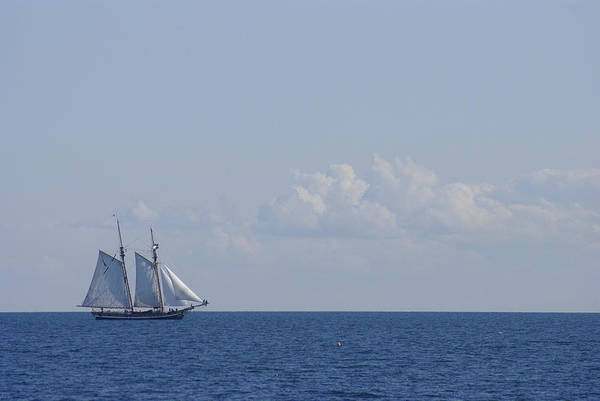 Photograph - Sailing Over The Ocean Blue by Marilyn Wilson