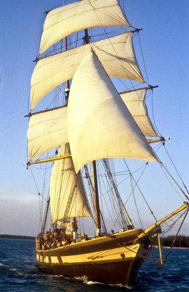 Crows Nest Wall Art - Photograph - Sailing Ship Carribean by Douglas Barnett