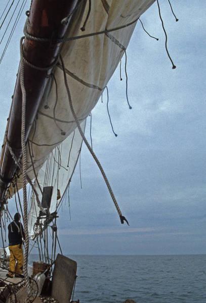 Skipjack Wall Art - Photograph - Sailing Skipjack by Skip Willits
