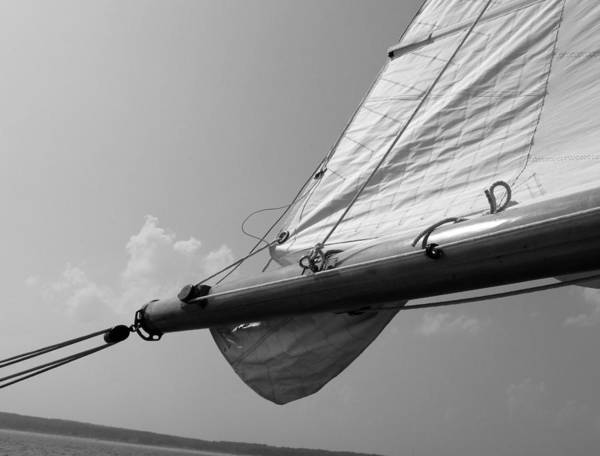 Rigging Photograph - Sailing by Tony Grider