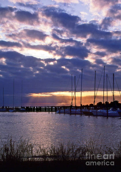 Sailing Terms Photograph - Sailors Delight by Skip Willits