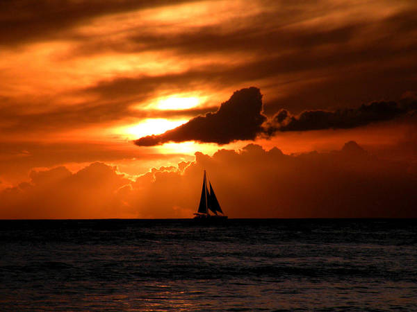 Photograph - Sails In The Sunset by Micki Findlay