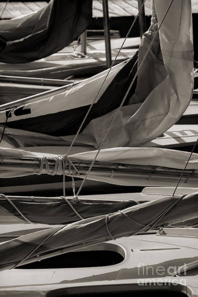 Photograph - Sails by Jeff Breiman