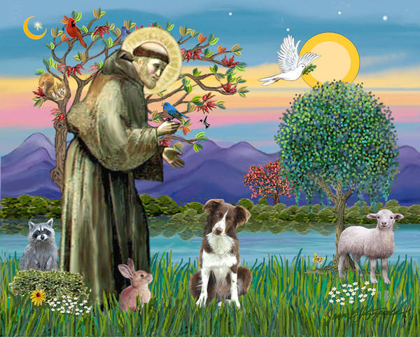 Saint Francis Blesses A Brown And White Border Collie Art Print