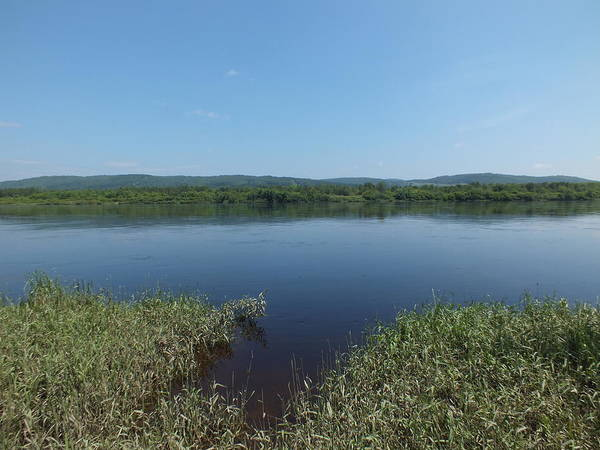 Aroostook County Photograph - Saint John River 2 by Gene Cyr