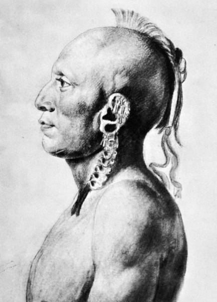 Drawing - Saint-memin Osage, 1804 by Granger