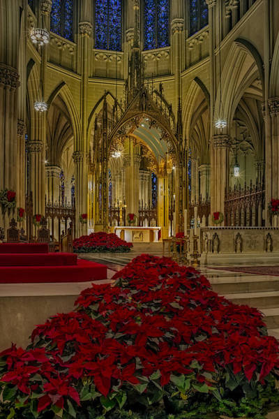 Photograph - Saint Patricks Cathedral by Susan Candelario