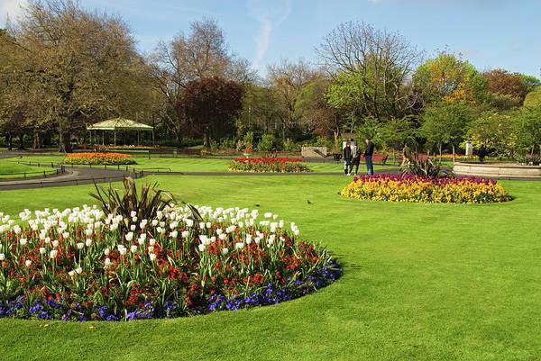 County Dublin Photograph - Saint Stephens Green Garden by Stephen Saks