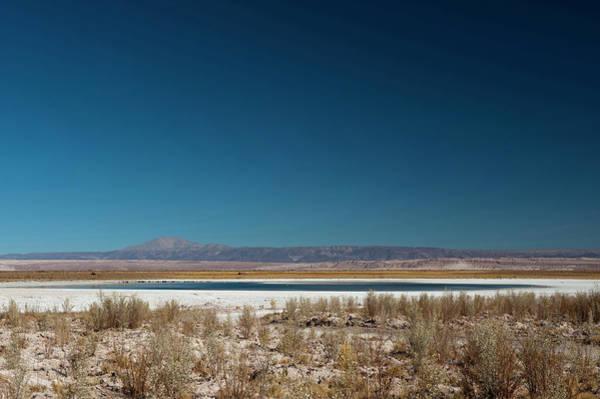 Salar De Atacama Photograph - Salar De Atacama, Atacama Desert, Chile by Sergio Pitamitz