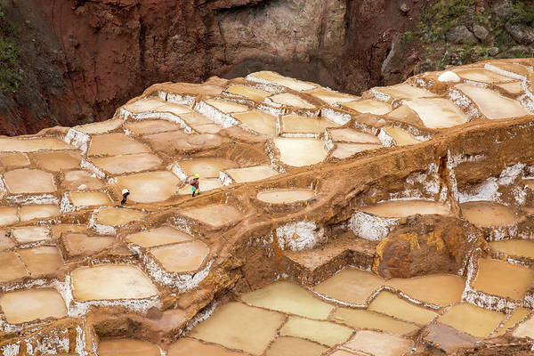 Cusco Photograph - Salinas Salt Pools In The Sacred by Julia Cumes