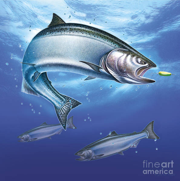 Painting - Salmon  by JQ Licensing