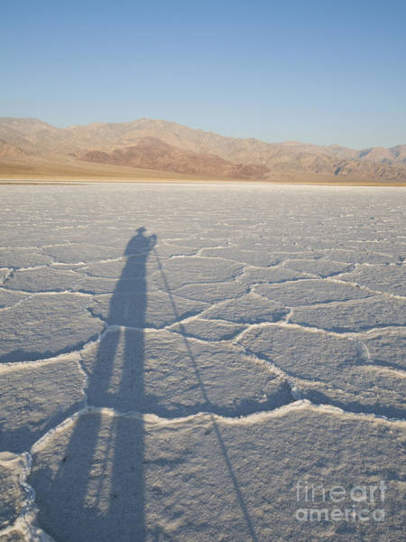 Photograph - Salt And Shadow by Dan Suzio
