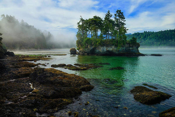 Photograph - Salt Creek Seastack by Greg Norrell