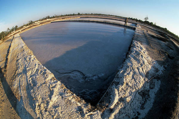 Fish Pond Photograph - Salt Evaporation Ponds by Sinclair Stammers/science Photo Library