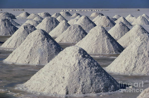 Photograph - Salt Extraction In Bolivia by Daniele Pellegrini