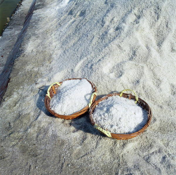 Taiwanese Wall Art - Photograph - Salt Extraction by Mark De Fraeye/science Photo Library