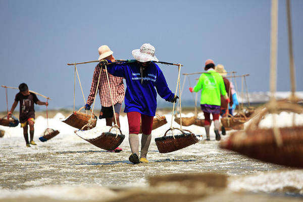 Casual Photograph - Salt Farm In Thailand by Monthon Wa