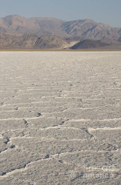 Photograph - Salt Flats In Death Valley by Dan Suzio