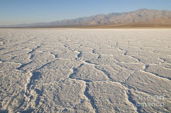 Photograph - Salt Flats In Death Valley National Park by Dan Suzio
