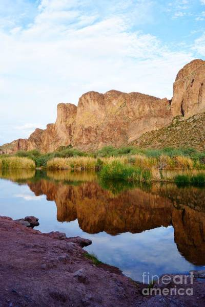 Photograph - Salt River Reflection Portrait by Kerri Mortenson