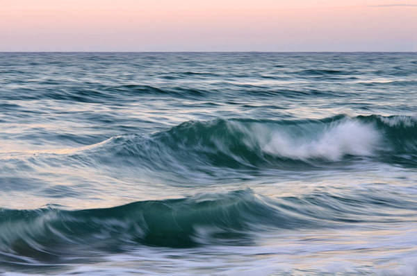 Soul Photograph - Saltwater Soul by Laura Fasulo