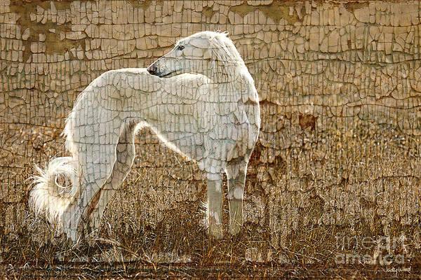 Saluki Texture Art Print by Judy Wood