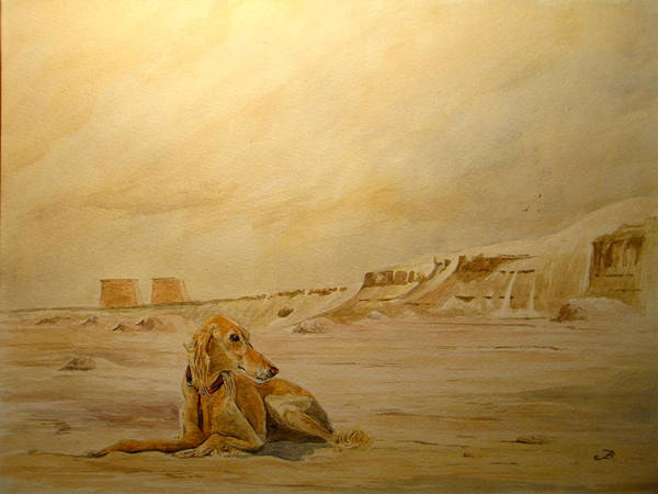 Ancient Egypt Painting - Saluky At Luxor by Juan  Bosco