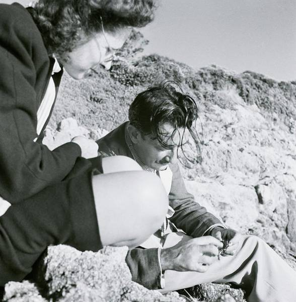 Eastern European Photograph - Salvador And Gala Dali On Rocks by Horst P. Horst
