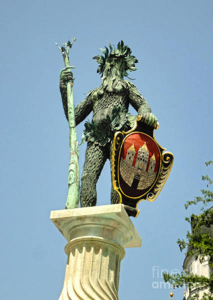 Photograph - Salzburg Tree Man by Gregory Dyer