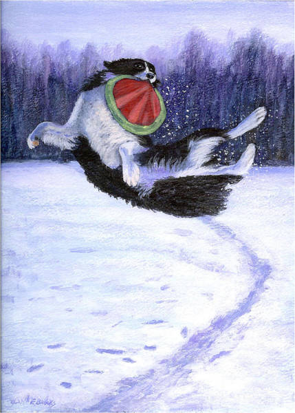 Painting - Sammy's Frisbee Jump by Fran Brooks