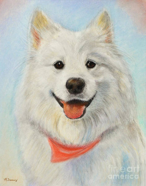 Art Print featuring the painting Samoyed Painting by Kate Sumners