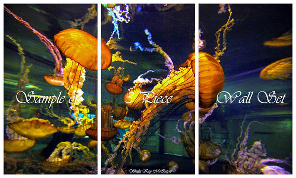 Photograph - Sample Of 3 Piece Wall Art by Sheila Kay McIntyre