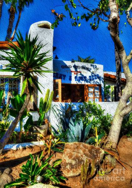 Photograph - San Diego Old Town Colors 3 by Mel Steinhauer