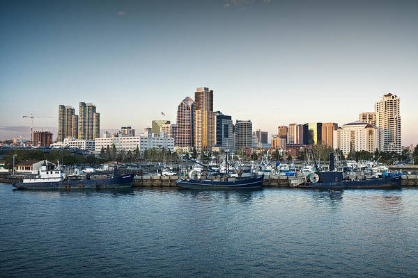 Photograph - San Diego Skyline No 0173 by Randall Nyhof