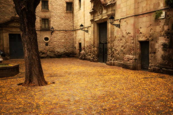 Brillante Photograph - San Felip Nery Square In Barcelona.  by HQ Photo
