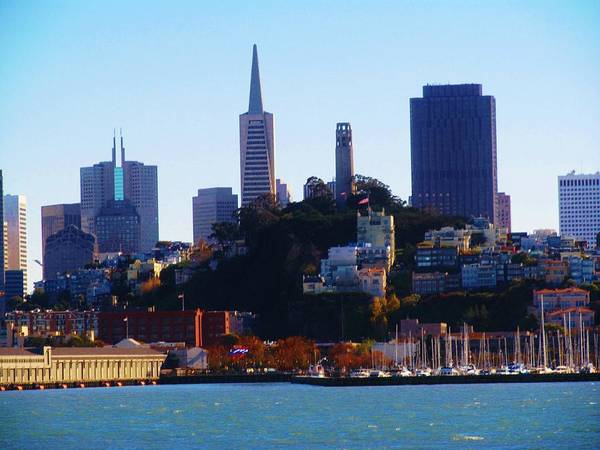 Photograph - San Francisco Autumn by Michelle Dallocchio