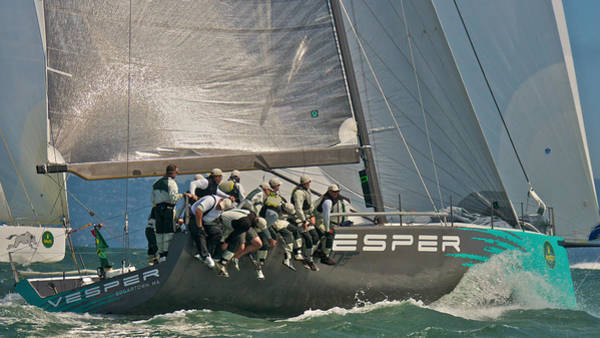 Photograph - San Francisco Bay Racing by Steven Lapkin