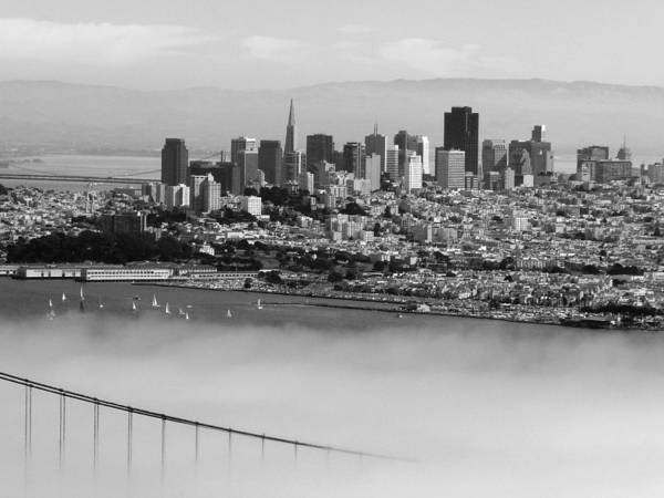Photograph - San Francisco Panorama Black White by Jeff Lowe