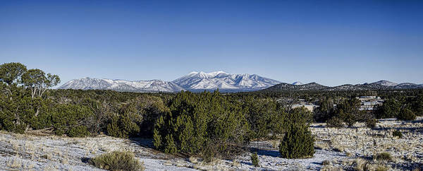 Photograph - San Francisco Peaks by Heather Applegate