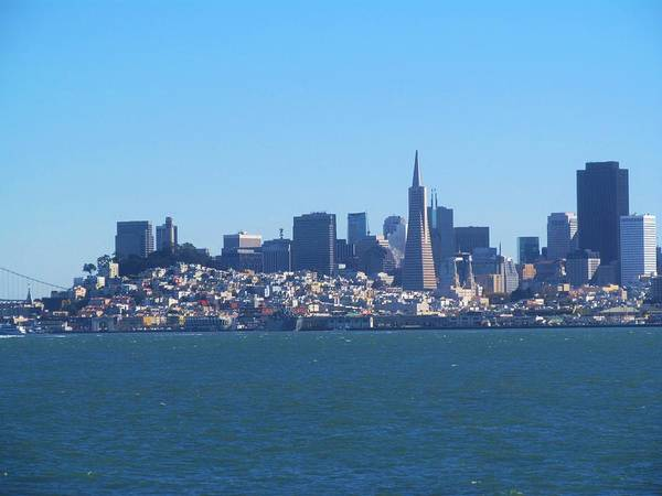 Photograph - San Francisco Skyline by Michelle Dallocchio